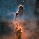 Elephant Trunk Nebula,                                frodos100