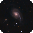 NGC 772,                                Günther Eder