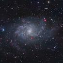 M33 Triangulum Galaxy,                                Serge Braun
