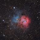 The Trifid Nebula (M20),                                Gregg