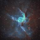 Thor's Helmet (NGC 2359),                                Gary Lopez