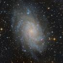 M33,                                Steve BENZ
