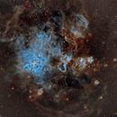 Tarantula Nebula,                                Matt Hughes