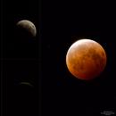 The Progression of the Eclipse,                                StarSurfer Carl