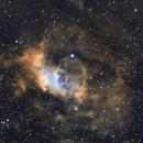 NGC 7635 Bubble Nebula,                                Wilsmaboy