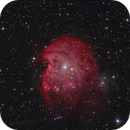 NGC 2174 - Monkey head nebula,                                Jeff Signorelli