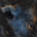 NGC 7000 North America Nebula SHO,                                Sean Boon