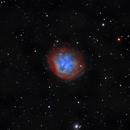 Abell 31 (sh2-290) : A planetary nebula in Cancer - HO,                                Daniel.P