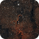 IC1396,                                Terry Adrian