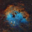The Tadpoles Nebula  IC410 Hubble Palette,                                Bogdan Jarzyna
