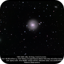 NGC 2681,                                Rauno Päivinen