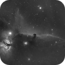 IC 434 - Horsehead Nebula (red only),                                Falk Schiel