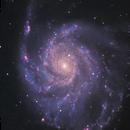 M101 - The Pinwheel Galaxy,                                David Schlaudt