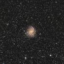 NGC 6946, The Fireworks Galaxy, Close Crop,                                doug0013