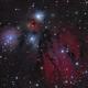 NGC 2170,                                Barry Wilson