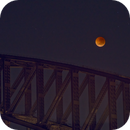 Lunar Eclipse over Sydney Harbour Bridge,                                Peter Pat