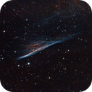 Pencil Nebula,                                Matt Balkham