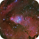 NGC2264 - Christmas Tree  Cluster, Cone Nebula and Fox Fur - LRGBHa,                                Dave (Photon)