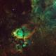 Fishhead Nebula in Narrowband,                                Muhammad Ali
