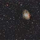 Crab Nebula,                                Enrico Pangrazi