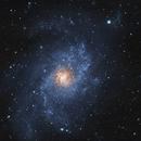 M33 - f/11.7 w/o LPS filter,                                Florian Drews