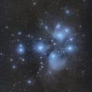 M45 ,                                Paul May