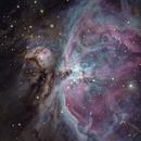 M42 Orion Nebula,                                Marco van der Kooij