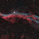 NGC 6960 - WESTERN VEIL,                                Adrian Criss