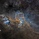 Statue of Liberty Nebula Complex Narrowband,                                Zhuoqun Wu