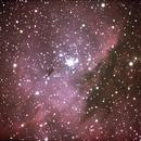 NGC 281 Pacman Nebula,                                Robin Clark - EAA imager