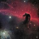 IC434 - Horsehead Nebula,                                Ken