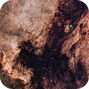 NGC 7000 & IC 5070,                                Matt Dugas