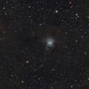 IRIS nebula,                                Michael_Xyntaris