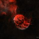 Jellyfish Nebula Starless,                                Michael Lev