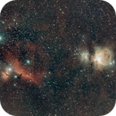 Orion Constellation Widefield #6,                                Molly Wakeling