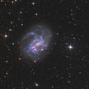NGC 4395,                                Bart Delsaert