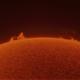 El Sol en Hidrógeno Alfa!,                                Guillermo Spiers