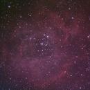 Rosette nebula,                                Graham Kettlewell