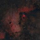 The Angelfish Nebula v2,                                Logan N