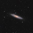NGC 253,                                Stefan Muckenhuber