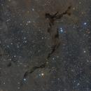 Barnard 150 (Seahorse Nebula),                                Dennis Sprinkle