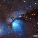 M78 near Vanishing NebuLa,                                bawind Lin