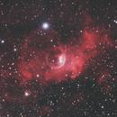 NGC 7635 Bubble Nebula,                                David Newbury