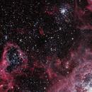 NGC 2070, The Tarantula Nebula (T32),                                Ruben Barbosa