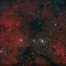 IC1396,                                Massimiliano Zulian