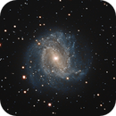 M83 - The Southern Pinwheel Galaxy,                                Rodrigo Andolfato