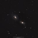 NGC 3166 & NGC 3169,                                Ronny Kaplanian