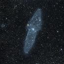 Squid nebula Ou4 (c-orgb),                                Ram Samudrala