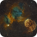 The Jellyfish Nebula-IC 443,                                Timothy Martin & Nic Patridge