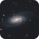 NGC 2903 Ha+LRGB - EdgeHD 9.25 - MyT - ASI1600MM Cool - 24 hours,                                Rowland Archer